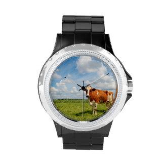 Vaca curiosa que se coloca en prado relojes de pulsera