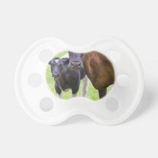 Vaca de Brown así como becerro blanco y negro Chupetes