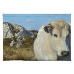 Vaca de Connemara