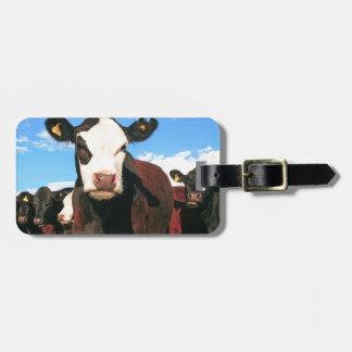 Vaca de Holstein Etiqueta De Equipaje