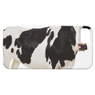Vaca de Holstein (tauro del Bos) iPhone 5 Case-Mate Cárcasa