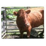 Vaca de la granja de Brown Pizarras