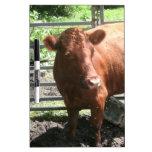 Vaca de la granja de Brown Tableros Blancos