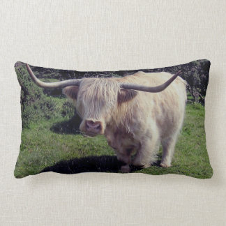 Vaca de la montaña de Dartmoor en el movimiento Cojín Lumbar