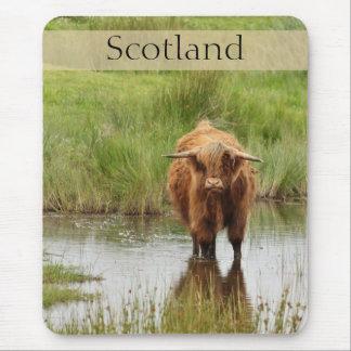 Vaca de la montaña de Escocia en foto del agua Tapetes De Ratones
