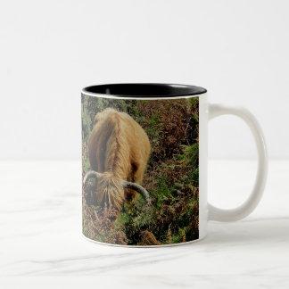 Vaca de la montaña en brackon en dartmoor taza de café