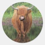 Vaca de la montaña etiqueta redonda