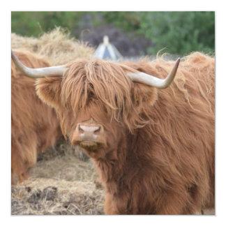 Vaca de la montaña invitacion personal