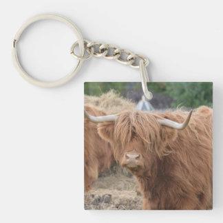 Vaca de la montaña llavero cuadrado acrílico a una cara