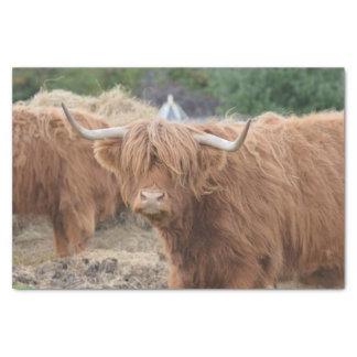 Vaca de la montaña papel de seda pequeño