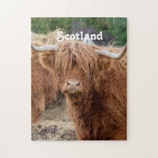 Vaca de la montaña puzzles con fotos