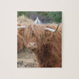 Vaca de la montaña rompecabezas con fotos