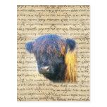Vaca de la montaña tarjetas postales