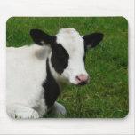 Vaca de leche de la lechería de Holstein en hierba Tapete De Ratones