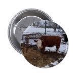 vaca de Madison Pins