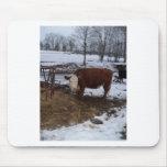 vaca de Madison Tapetes De Ratones