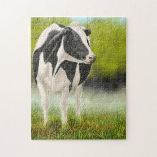 Vaca de ordeño de Holstein en rompecabezas del