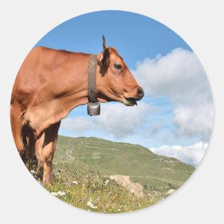 Vaca de Tarine en las montañas francesas Pegatina Redonda