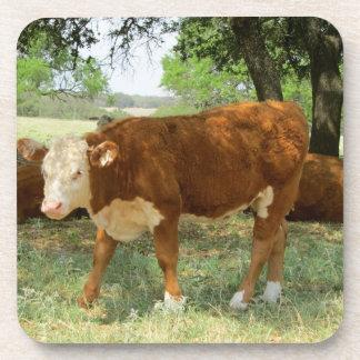 Vaca de Tejas Posavasos