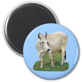 Vaca del Brahman Imán Redondo 5 Cm