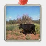 Vaca del desierto ornato