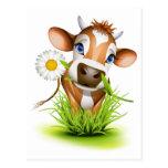 Vaca del jersey en hierba tarjetas postales