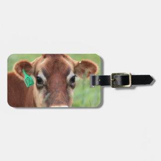 Vaca del jersey etiquetas para equipaje