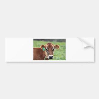 Vaca del jersey pegatina para auto