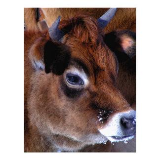 Vaca del jersey plantilla de membrete