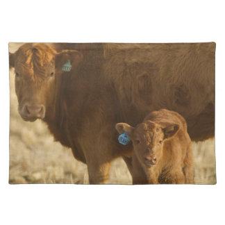 Vaca del mestizo con el becerro cerca de Choteau, Mantel Individual