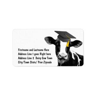 Vaca divertida de la graduación de la enhorabuena etiqueta de dirección