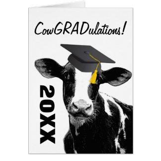 Vaca divertida de la graduación de la enhorabuena tarjeta de felicitación