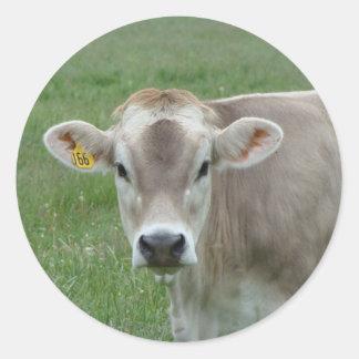 vaca dulce del jersey pegatina redonda