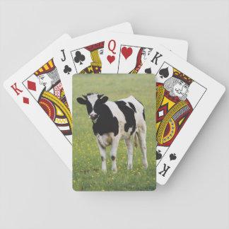 Vaca en el campo de Wildflowers Barajas De Cartas