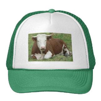 Vaca en el gorra de la hierba