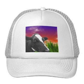 Vaca en hierba y el cielo vivo de la puesta del gorros