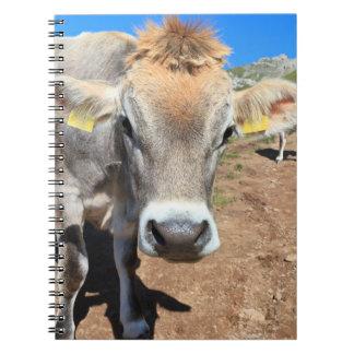 vaca en pasto alpino libro de apuntes con espiral