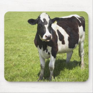 Vaca en prado mouse pad