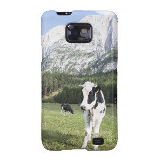 Vaca en un prado Fie Sciliar Allo alto el Adigio Galaxy SII Carcasas