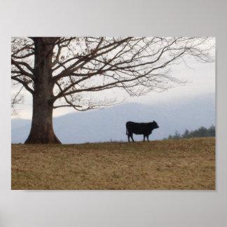 Vaca en una colina póster