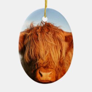 Vaca escocesa de la montaña - Escocia Adorno Navideño Ovalado De Cerámica