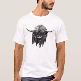 Vaca escocesa de la montaña playera