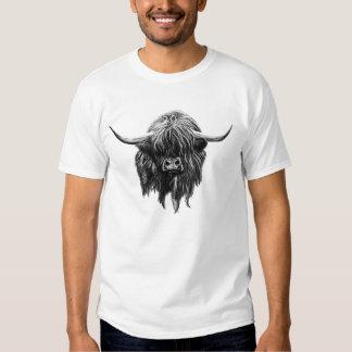 Vaca escocesa de la montaña playeras