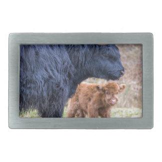 Vaca escocesa negra de la madre del montañés con hebilla de cinturon rectangular