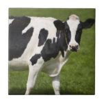 Vaca frisia azulejos