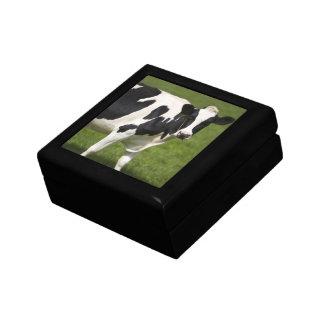 Vaca frisia caja de regalo