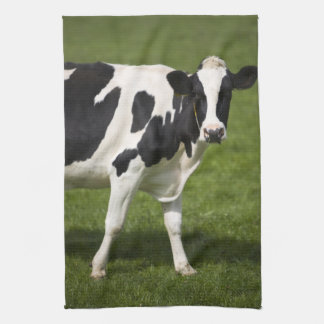 Vaca frisia toalla