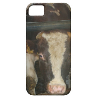 Vaca iPhone 5 Case-Mate Protectores