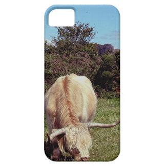 Vaca Grazeing de la montaña de Dartmoor cerca del iPhone 5 Carcasa