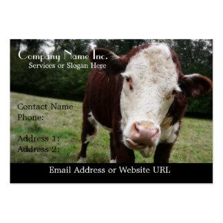 Vaca hecha frente blanca que pega hacia fuera la tarjetas de visita grandes
